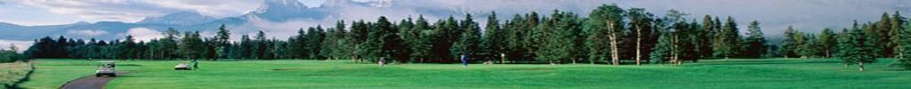header-golf